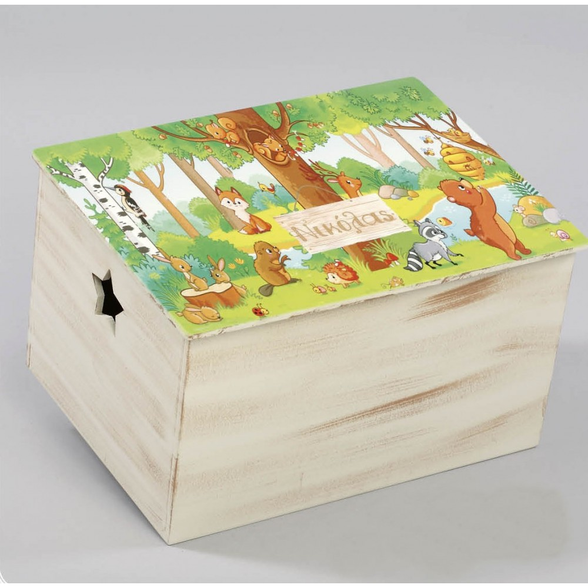 Κουτί βάπτισης Ζώα του δάσους - Z-573